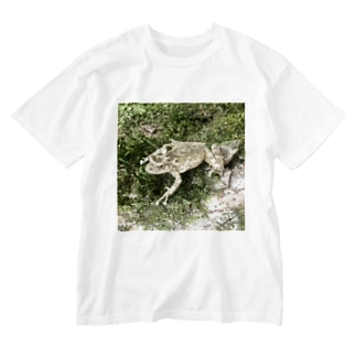 Fantastic Frog -Original Version- Washed T-shirts
