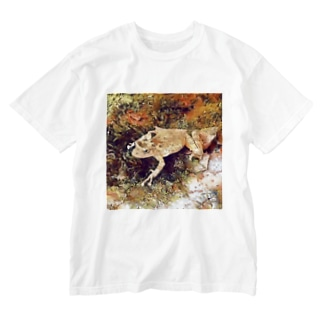 Fantastic Frog -Autumn Version- Washed T-shirts