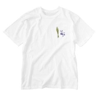 いいね(稲) Washed T-shirts