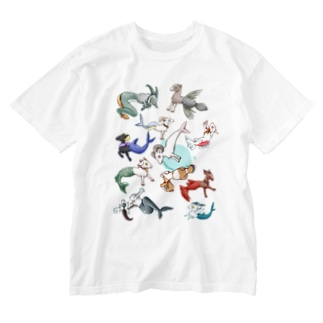 カプリコーン Washed T-shirts