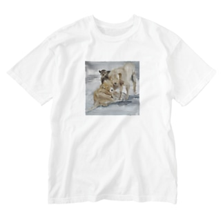 ポラリス Washed T-shirts