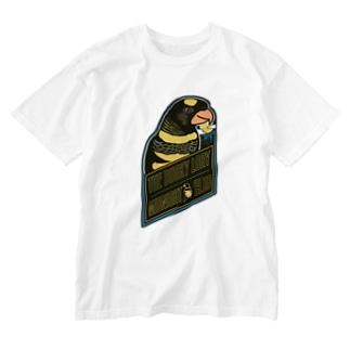 コシジロインコのミッドナイトクラブ Washed T-Shirt