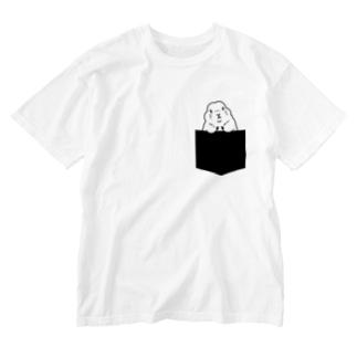 ジリスさん Washed T-shirts