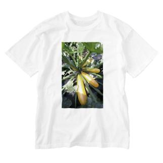 ズッキーニ・イエロー① Washed T-shirts