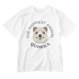クオッカ(Quokka) Washed T-shirts