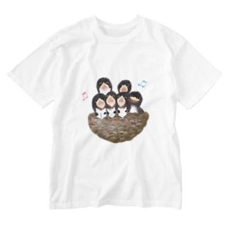 ♬コーラス♬ Washed T-shirts