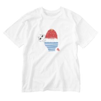 ハイケイ コオリオンチュウ 2020★ Washed T-shirts