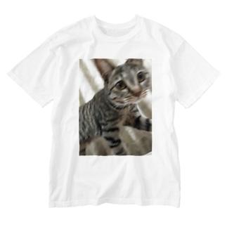 こったん Washed T-shirts