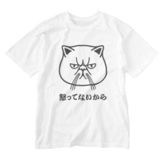 エキゾチックショートヘア「怒ってないから」 Washed T-shirts