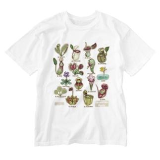 食虫植物図鑑 Washed T-shirts