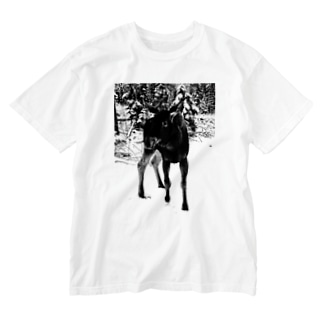 Vaasa/Vasaシリーズ 「Mervi」 Washed T-shirts