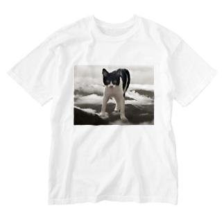 sngkのザーボン Washed T-shirts