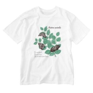アカボシゴマダラとエノキ Washed T-shirts