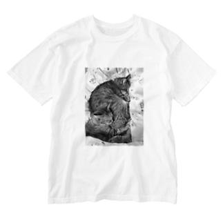 サンチコプリン Washed T-shirts