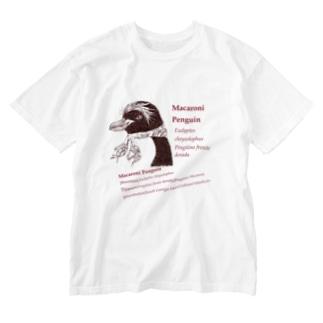 伊達なマカロニペンギン(図鑑コラージュ) Washed T-shirts