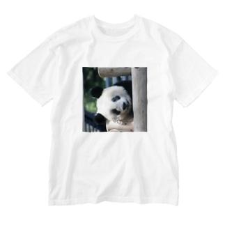 ひょっこりシャンシャン Washed T-shirts