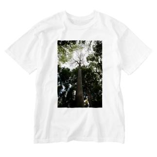 見上げればTシャツ Washed T-shirts