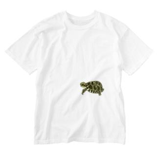 リクガメハイハイ Washed T-shirts
