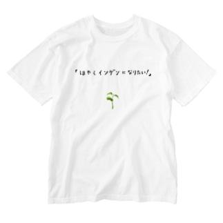 ユーモアもじりデザイン「はやくインゲンになりたい」 Washed T-shirts