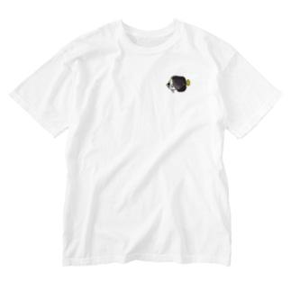 チリメンヤッコ Washed T-shirts