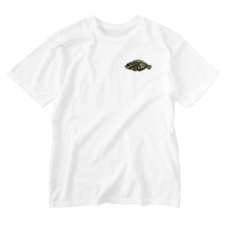snaggedgorillaのホホワキュウセン Washed T-Shirt