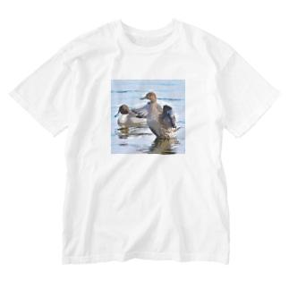 オナガガモ Washed T-Shirt