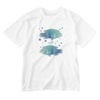 メガネモチノウオ。 Washed T-shirts