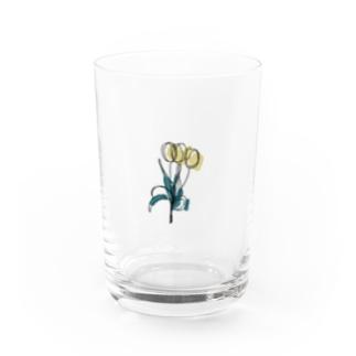chulip Water Glass