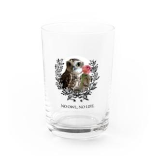 NO OWL, NO LIFE. Water Glass