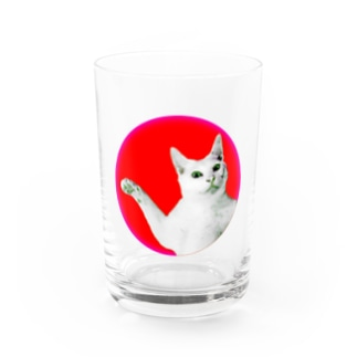 HINOMARU NEKO Water Glass