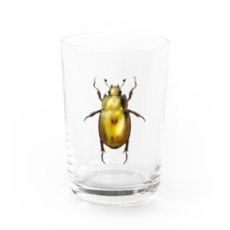 Sue visual storeのinsect コガネムシ Water Glass