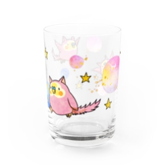 めめんと桃鶏のインコタンぐらす Water Glass