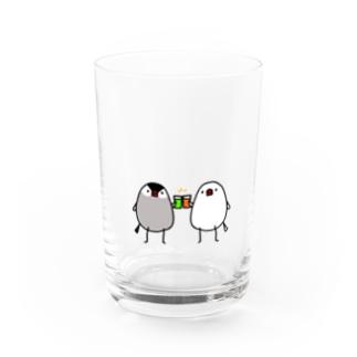 乾杯文鳥 Water Glass