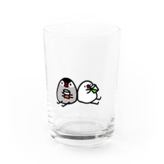 飲む飲む文鳥 Water Glass
