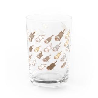 謎の フェレット 大艦隊  Water Glass