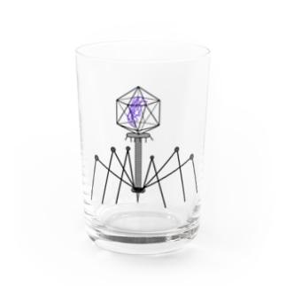 ファージ Water Glass