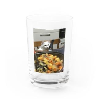 公式ゴジュアル福田祐斗藍猫@さくちゃん限定デザイン Water Glass