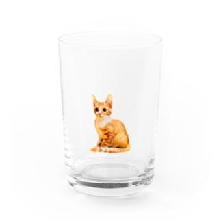 KAWAII CHATORA NEKO Water Glass