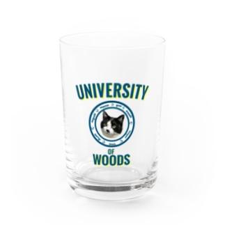 WOODS UNIVERSITY Water Glass