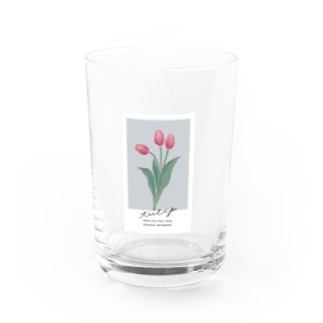 tulip Water Glass