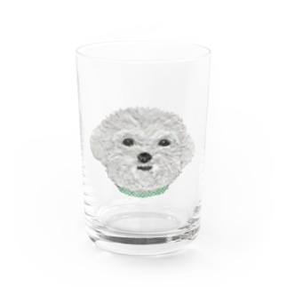 Bless Hue のマルチーズ Water Glass