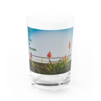 AROE Water Glass