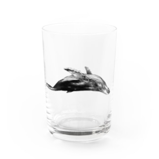クジラB Water Glass