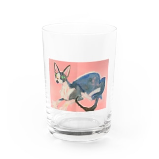 ハンサムキャット スフィンクス Water Glass