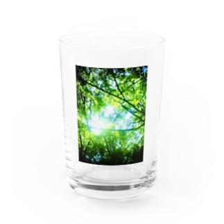 GREEN/green Water Glass