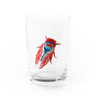 素数蝉 Water Glass