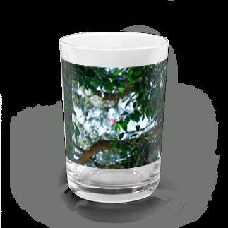 はち / きまぐれハチログのぽつんと椿 Water Glass
