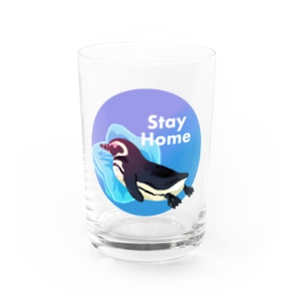 Stay Homeフンボルトペンギン Water Glass