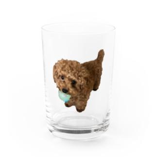 メルちゃんの可愛さを布教するだけのお店の伝説の秘宝を携えし犬 Water Glass
