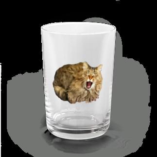 とらお/虎緒のまむさん(あくび) Water Glass